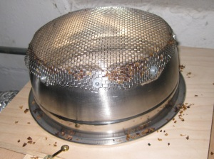 Bottom of Colander